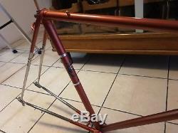 Beautiful Vintage Hetchins 1960s Italia Bike Bicycle Frame & Forks 56cm