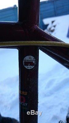 Genesis ioid, Alfine 11, Reynolds, Exotic forks, Bikepacking