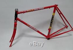 NEW 51cm TI RALEIGH TEAM FRAME & FORKS WITH CAMPAGNOLO RECORD HEADSET