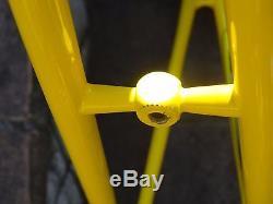 NOS Battaglin frame&fork steel L'Eroica new old stock