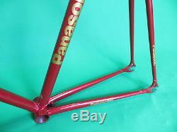 Panasonic NJS Keirin Pista Frame Track Bike NO FORK Fixed Gear 52cm
